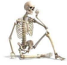 Cause osteoporosi