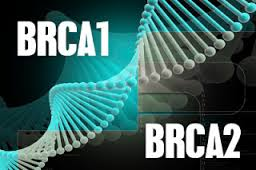 brca1 brca2 e cancro ovarico